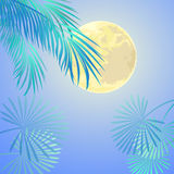 Yellow Moon Background Vector Illustration Stock Photo