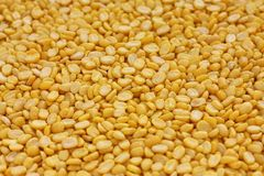 Yellow moong dal Royalty Free Stock Photos