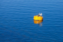 Yellow mooring buoy with hook on blue sea water Royalty Free Stock Image