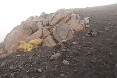 Yellow Moss on Mount Etna. The Etna volcano crater. Black Volcanic Earth, Volcanic Lava and Stones. Dense Fog on Mount Etna. Moss on the Etna volcano. The Etna stock photography