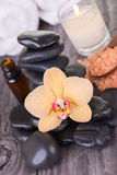 Yellow moth Orchid and black stones on weathered deck Royalty Free Stock Photos