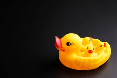 Yellow Mother and baby ducks rubber duck  on black backg Stock Images