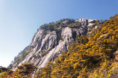 Yellow Mountain China Landscape Royalty Free Stock Photos