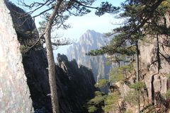 Yellow Mountain - Huangshan, China. stock photos