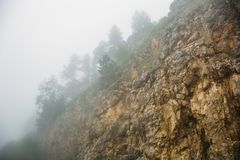 Yellow mountains with forest in morning cloud of fog, mysterious mist, spring in nature stock photography