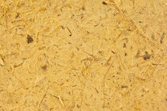 Yellow mulberry paper  texture Stock Photo