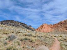 Multi color and types Crustose Lichen or algae on a desert sandstone boulder in Southwestern Utah, USA near St. George stock image