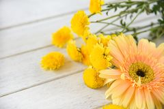 Yellow mum flowers and gerbera spring flowers white wooden background stock image