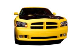 Yellow Muscle royalty free stock photos