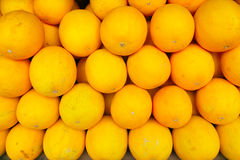 Yellow muskmelon Stock Image