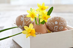 Yellow narcissus in egg shell. And painted easter eggs Stock Image