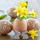 Yellow narcissus in egg shell. On rustic wood Royalty Free Stock Image