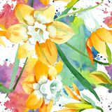 Yellow narcissus floral botanical flower. Watercolor background illustration set. Seamless background pattern vector illustration