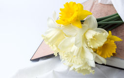 Yellow narcissus flowers on open vintage book Royalty Free Stock Photos