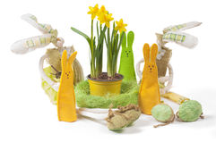 Yellow narcissus in the pot and five bunnies Royalty Free Stock Photo
