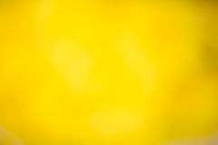 Yellow Nature Background Stock Photography