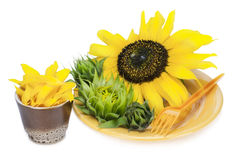 Yellow nature diet concept. Yellow nature nutrion flowers diet concept- plate with summer sunflowers Royalty Free Stock Photo