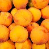 Yellow  nectarines in the market.  Nectarine harvest.  Food back Royalty Free Stock Image
