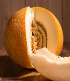 Yellow netted melon Stock Photography