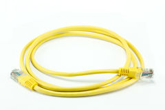 Yellow network cable. On white Stock Image