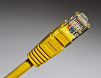 yellow network cable Royalty Free Stock Images