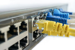 Yellow network cable connect to switching hub Stock Image