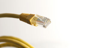 Yellow network cable with RJ45 connector on white background. Category 5 cable (Cat 5) is a twisted pair cable for carrying signals. This type of cable is used Royalty Free Stock Photo