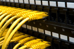 Yellow network cables Stock Photo