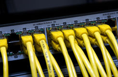Yellow network cables Stock Images