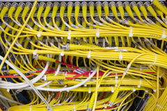 Yellow Network cables connected to the server Stock Photography