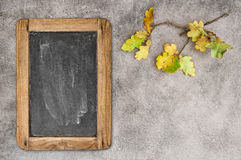 Yellow oak leaves vintage chalkboard. Autumn background Royalty Free Stock Images