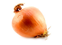 Yellow onion. On white background Stock Images