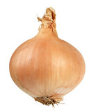 Yellow Onion Royalty Free Stock Photography
