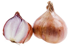 Yellow onion Royalty Free Stock Images