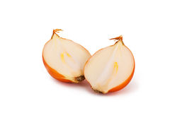 Yellow onion Stock Image
