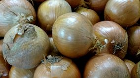 Yellow onion Stock Photo