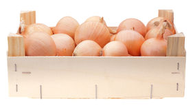 Yellow onion bulbs in wooden box Stock Image