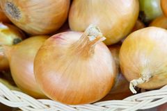 Yellow onion close-up background Stock Photos