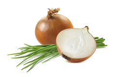 Yellow onion half green scallion 6  on white background Royalty Free Stock Image