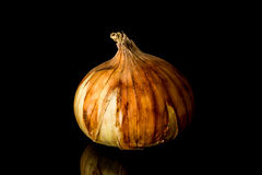 Yellow Onion Royalty Free Stock Photos