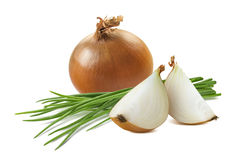 Yellow onion quarters green scallion isolated on white. Background as package design element stock images