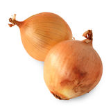 Yellow onions Royalty Free Stock Image