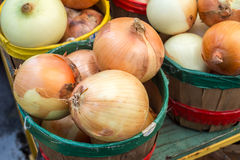 Yellow onions in baskets Royalty Free Stock Photo