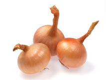 Yellow onions. Bulbous vegetables  on white Stock Photography