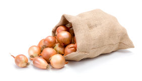 Yellow onions in burlap bag Royalty Free Stock Photo