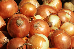 Yellow onions. A detailed view of some yellow onions, at the market, landscape cut stock photos