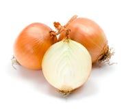 Yellow onions Stock Photography