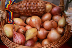 Yellow onions in a wicker basket Royalty Free Stock Photos
