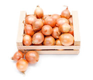 Yellow onions in wooden crate Royalty Free Stock Image