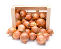 Yellow onions in wooden crate Royalty Free Stock Photography